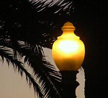 LIGHT by gracestout2007