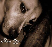 I Miss You... by Dawn di Donato