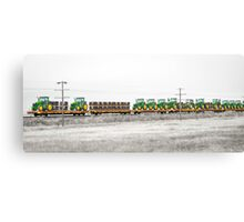 Trained Deere Canvas Print
