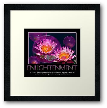 Enlightenment by Trudy Wilkerson