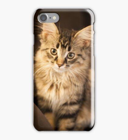 Flynn Cat 2 iPhone Case/Skin