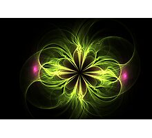 Bloom for Eternity Photographic Print
