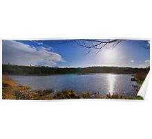 Rodley Nature Reserve ~ Pano ~ Poster