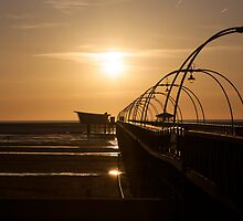 Million Pound Pier by Paul Turri