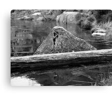 Ice on the water Canvas Print