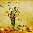 Spring by Miroslava Balazova Lazarova