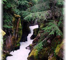 Avalanche Falls Creek by Loree McComb