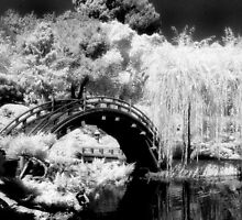 Japanese Garden Bridge - Infrared by ©  Paul W. Faust