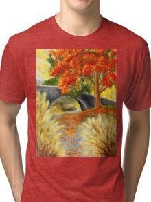 Dream River Tri-blend T-Shirt