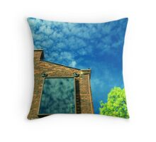 won't you come out to play? Throw Pillow