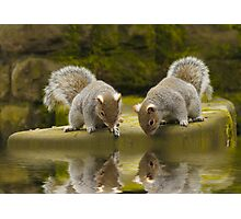 Double reflections Photographic Print