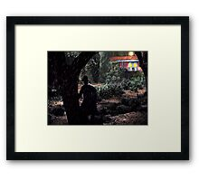 A Thief in the Night Framed Print