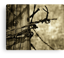 Don't Fence Me In 2 - Barbed wire on post in sepia Canvas Print