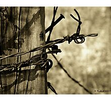 Don't Fence Me In 2 - Barbed wire on post in sepia Photographic Print