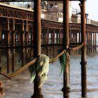 Burnt Down Pier by jimclark