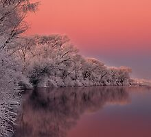 Winter morning on the Snake River by Leland Howard
