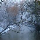 A Creek in Hoggs Hollow .. by Larry Llewellyn