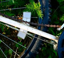 Forgotten Bicycle by illPlanet