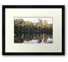 cypress trees mirror immage Framed Print