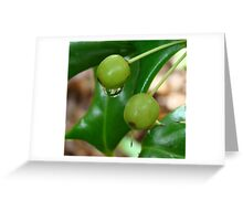 Holly Berry and Raindrop Greeting Card