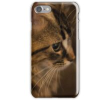 Flynn Cat 3 iPhone Case/Skin