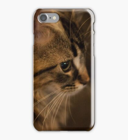 Flynn Cat 3 iPhone Case/Skin