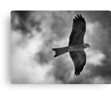 On the Hunt! Canvas Print