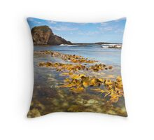 Shades Pool - New Zealand Throw Pillow