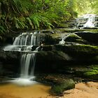 Leura Cascades by Michael Matthews