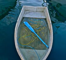 The Blue Oar by Scott Johnson