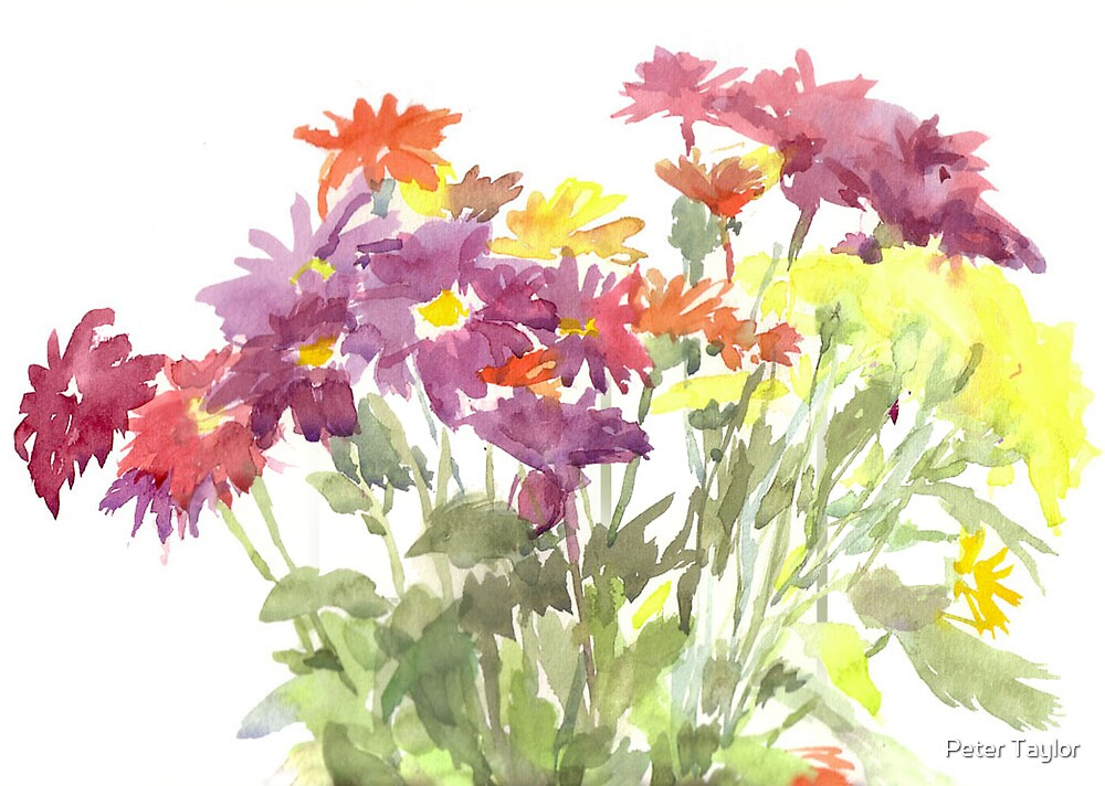 little flower study by Peter Lusby Taylor