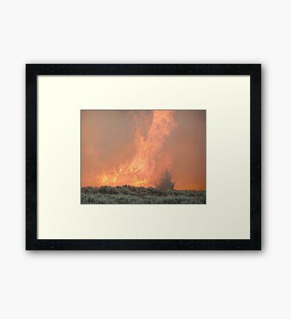 Haul Chart Framed Print