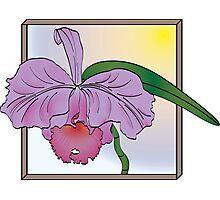Silky Purple Cattleya Orchid Photographic Print