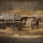 Covered Wagon. Relic of the Pioneers. Montana. USA. by photosecosse /barbara jones