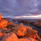 Red Sun At Canal Rocks  by Chris Paddick