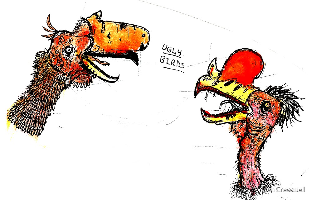 Ugly birds by Ben Cresswell