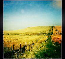 Moorland - The West Pennine Moors by GaryDanton