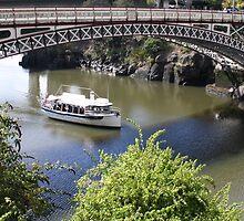 Kings Bridge at Launceston by myraj