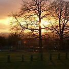 Trent Valley Evening by ssalt