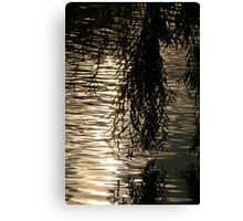 Weeping Willow Silhouette by Water Canvas Print