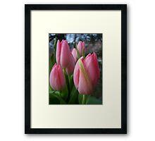 Hello Spring! Framed Print