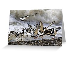 Oyster Dance Greeting Card
