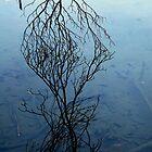 Entanglement by nadinecreates