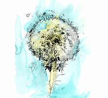 Dandelion by Illustrated Planet