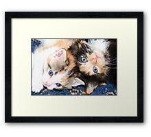 Who! Us?? Framed Print