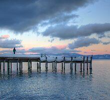 Sugar Pine Point Dock by Dory Breaux
