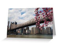 Cherry Blossoms Under the Queensborough Bridge 2 Greeting Card