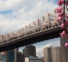 Cherry Blossoms Under the Queensborough Bridge 2 Sticker