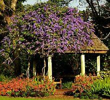 Botanical Landscape ~ Part Three by artisandelimage