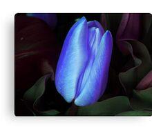 SAD & BLUE Canvas Print